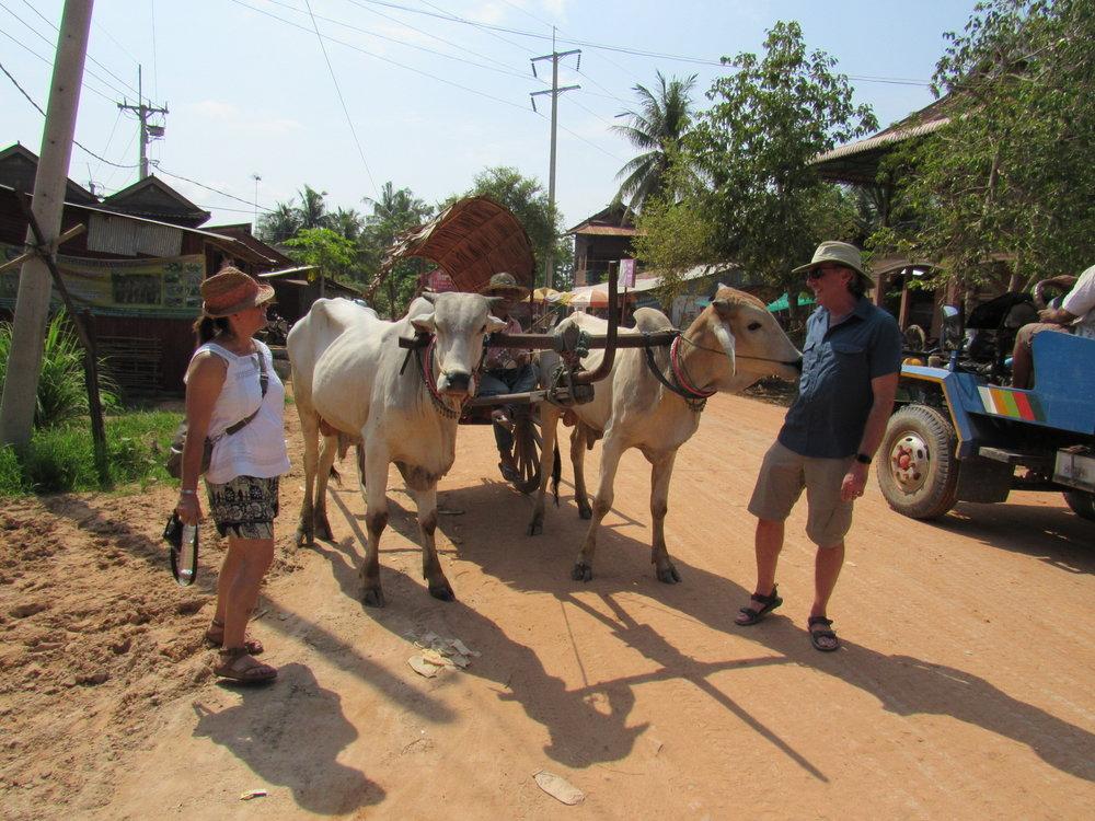 ox-cart